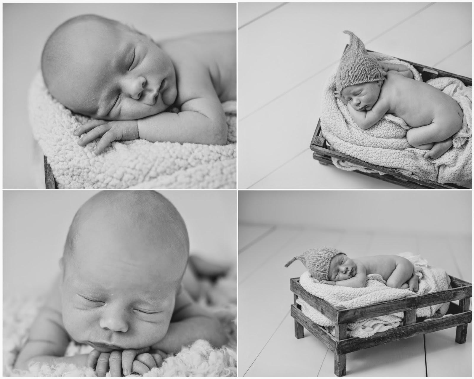 nyfødtfotograferingfotograftanjamyrbråten12